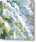 Beautiful Trees Covered With Snow In Winter Park Metal Print