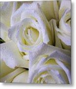 Beautiful White Roses Metal Print