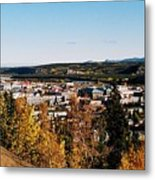 Beautiful Whitehorse ... Metal Print