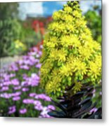 Beautiful Yellow Flowers On A Garden Background Metal Print