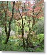 Beauty Among The Trees Metal Print
