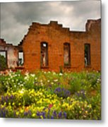Beauty And Ashes Metal Print