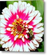 Beauty And The Bee #1 Metal Print