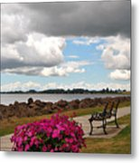 Beauty And The Bench Metal Print