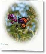 Beauty In God's Handiwork 2 Metal Print