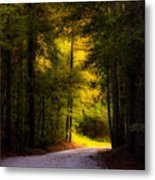 Beauty In The Forest Metal Print
