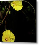 Beauty In The Shade Metal Print