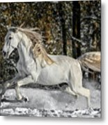 Beauty In The Snow Metal Print
