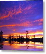 Beauty In The Storm Metal Print