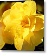 Beauty In Yellow Metal Print