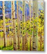Beauty of Aspen Colorado Metal Print