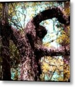 Beauty Of Natures Art Metal Print