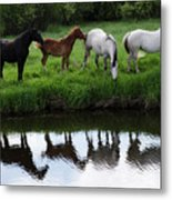 Beauty Of Place Metal Print
