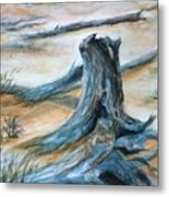 Beauty Of The Beach Metal Print