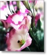 Beauty Of The Day Metal Print