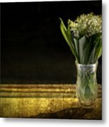 Beauty Of The Valley Metal Print