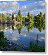 Beaver Dam Reflection In Grand Teton Np Metal Print