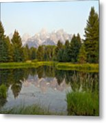 Beaver Pond At Schwabacher Landing Metal Print