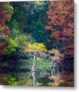 Beavers Bend Trees Metal Print