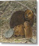 Beavers Metal Print