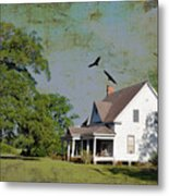 Because We Can Fly Together Metal Print