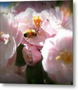 Bee Blossoms 2 Metal Print