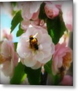 Bee Blossoms Metal Print