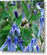 Bee Buzzing Through Blue Beauty Metal Print
