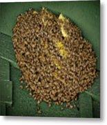 Bee Cluster Metal Print