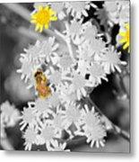 Bee Colored Metal Print