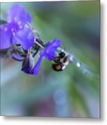 Bee Harmony Metal Print by Mary Lou Chmura