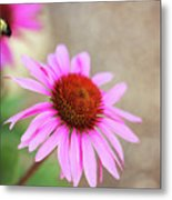 Bee In Motion Metal Print