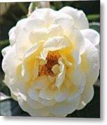 Bee My Rose Metal Print