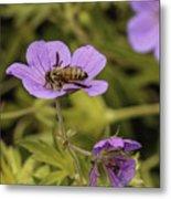 Bee On A Purple Flower Metal Print