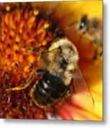 Bee One Metal Print