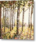 Beech Trees At Dawn Metal Print