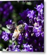 Bees Love Purple Metal Print