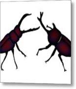 Beetle And Stag Beetle Metal Print