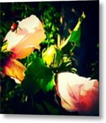 Beetle Hanging Out With Hibiscus Flowers Metal Print