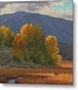 Before The Snow Metal Print