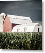 Before The Storm Metal Print by Lisa Russo