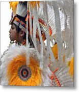 Behind The Feathers-3 Metal Print