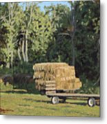 Behind The Grove Metal Print