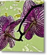 Behind The Orchids Metal Print