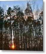 Behind The Trees Metal Print