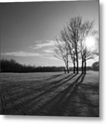Behind The Trees Metal Print