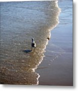 Being One With The Gulf - Ahead Metal Print