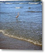 Being One With The Gulf - Detached Metal Print