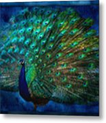Being Yourself - Peacock Art Metal Print