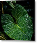 Bejeweled Leaf Metal Print